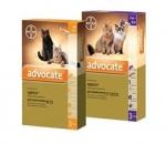Bayer Advocate для кошек